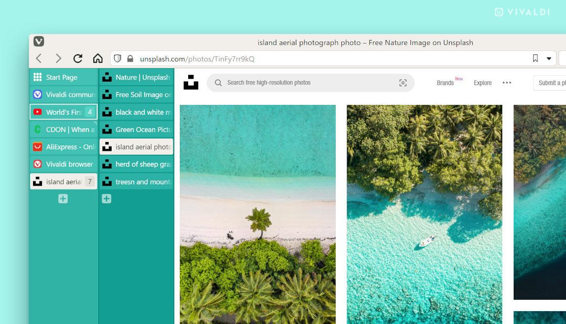 vivaldi browser, screen capture